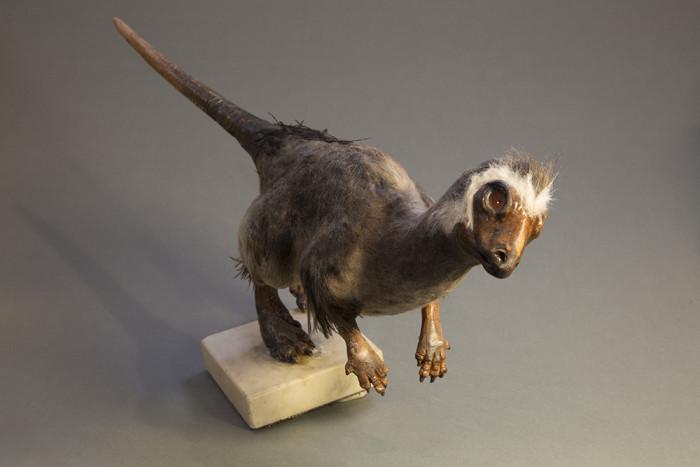 Макет динозавра Кулиндадромеуса забайкальского